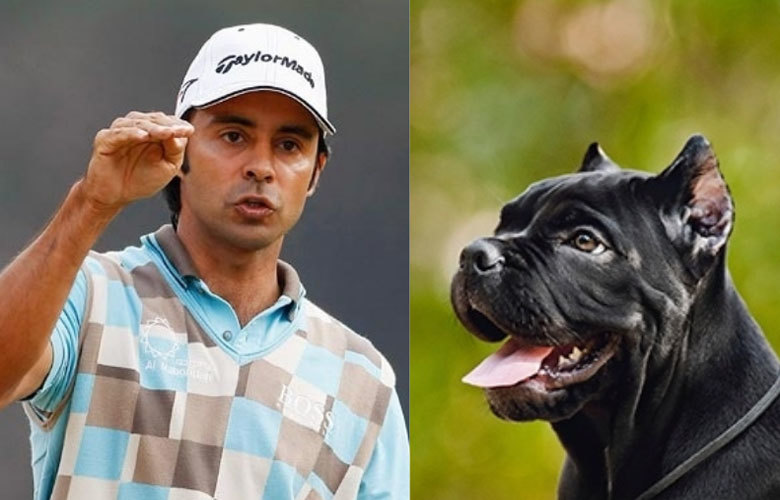 Jyoti Randhawa to lead dogs for man-eater tigress operation